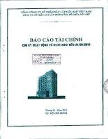 Báo cáo tài chính quý 1 năm 2012 - Công ty Cổ phần Xây lắp Đường ống Bể chứa Dầu khí
