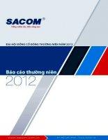 Báo cáo thường niên năm 2011 - Công ty Cổ phần Đầu tư và Phát triển Sacom