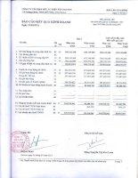 Báo cáo KQKD quý 1 năm 2011 - Công ty Cổ phần Đầu tư Điện Tây Nguyên