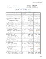 Báo cáo tài chính quý 4 năm 2010 - Công ty Cổ phần Xi măng Sài Sơn