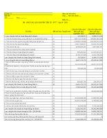 Báo cáo tài chính hợp nhất quý 2 năm 2011 - Công ty Cổ phần Sông Đà 7.04