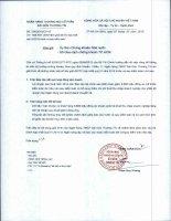 Báo cáo tài chính hợp nhất năm 2014 (đã kiểm toán) - Ngân hàng Thương mại Cổ phần Sài Gòn Thương Tín