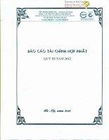 Báo cáo tài chính hợp nhất quý 3 năm 2012 - Công ty Cổ phần Xây dựng hạ tầng Sông Đà