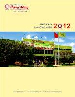 Báo cáo thường niên năm 2012 - Công ty Cổ phần Nhựa Rạng Đông