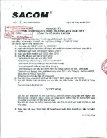 Nghị quyết Đại hội cổ đông thường niên năm 2011 - Công ty Cổ phần Đầu tư và Phát triển Sacom