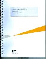 Báo cáo tài chính năm 2013 (đã kiểm toán) - Công ty cổ phần Sợi Thế Kỷ