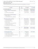 Báo cáo tài chính năm 2007 (đã kiểm toán) - Công ty Cổ phần Đầu tư và Xây dựng Tiền Giang