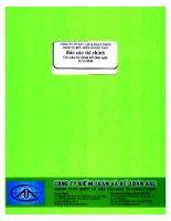 Báo cáo tài chính năm 2008 (đã kiểm toán) - CTCP Đầu tư Xây dựng và Phát triển Hạ tầng Viễn thông