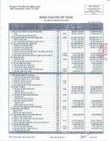 Báo cáo tài chính hợp nhất quý 1 năm 2010 - Công ty Cổ phần Kỹ Nghệ Lạnh
