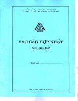 Báo cáo tài chính hợp nhất quý 1 năm 2013 - Công ty cổ phần Gang thép Thái Nguyên