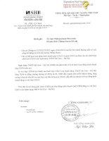 Báo cáo tài chính hợp nhất quý 1 năm 2016 - Ngân hàng Thương mại cổ phần Sài Gòn - Hà Nội