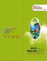 Báo cáo thường niên năm 2015 - Công ty Cổ phần Nhựa Rạng Đông
