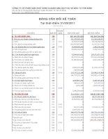 Báo cáo tài chính hợp nhất quý 2 năm 2011 - Công ty cổ phần Sản xuất Kinh doanh Xuất nhập khẩu Dịch vụ và Đầu tư Tân Bình