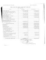 Báo cáo tài chính quý 1 năm 2007 - Công ty Cổ phần Công nghiệp Thương mại Sông Đà