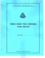 Báo cáo tài chính công ty mẹ quý 3 năm 2012 - Công ty cổ phần Gang thép Thái Nguyên