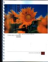 Báo cáo thường niên năm 2013 - Công ty cổ phần Chứng khoán Hoàng Gia