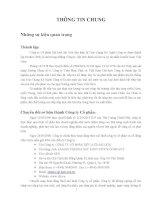 Báo cáo thường niên năm 2012 - Công ty Cổ phần Dệt lưới Sài Gòn