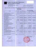 Báo cáo tài chính hợp nhất quý 4 năm 2009 - Công ty Cổ phần Đại lý Vận tải SAFI