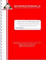 Báo cáo tài chính hợp nhất năm 2012 (đã kiểm toán) - Công ty Cổ phần Tập đoàn Thái Hòa Việt Nam
