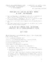 Nghị quyết Đại hội cổ đông bất thường ngày 23-12-2010 - Công ty Cổ phần Tập đoàn Thái Hòa Việt Nam