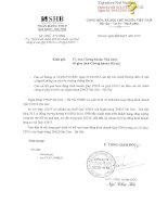 Báo cáo tài chính công ty mẹ quý 1 năm 2016 - Ngân hàng Thương mại cổ phần Sài Gòn - Hà Nội