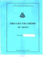 Báo cáo tài chính công ty mẹ quý 1 năm 2013 - Công ty cổ phần Gang thép Thái Nguyên