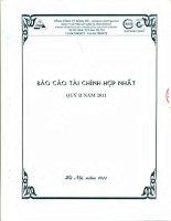 Báo cáo tài chính hợp nhất quý 2 năm 2011 - Công ty Cổ phần Xây dựng hạ tầng Sông Đà