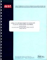 Báo cáo tài chính năm 2013 (đã kiểm toán) - Công ty Cổ phần Hợp tác kinh tế và Xuất nhập khẩu SAVIMEX