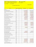Báo cáo tài chính quý 2 năm 2011 - Công ty Cổ phần Khách sạn Sài Gòn