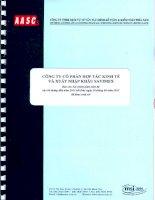 Báo cáo tài chính quý 2 năm 2013 (đã soát xét) - Công ty Cổ phần Hợp tác kinh tế và Xuất nhập khẩu SAVIMEX