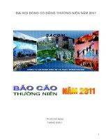 Báo cáo thường niên năm 2010 - Công ty Cổ phần Đầu tư và Phát triển Sacom