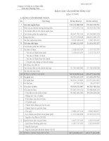 Báo cáo tài chính quý 3 năm 2009 - Công ty Cổ phần Đầu tư và Phát triển giáo dục Phương Nam