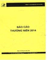 Báo cáo thường niên năm 2014 - CTCP Địa ốc Sài Gòn