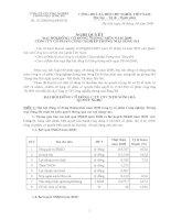 Nghị quyết đại hội cổ đông ngày 18-04-2009 - Công ty Cổ phần Công nghiệp Thương mại Sông Đà