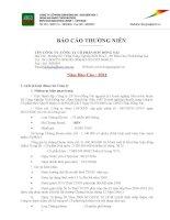 Báo cáo thường niên năm 2011 - Công ty Cổ phần Sơn Đồng Nai