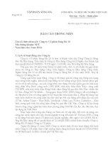 Báo cáo thường niên năm 2010 - Công ty Cổ phần Sông Đà 10