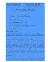 Báo cáo thường niên năm 2011 - Công ty Cổ phần Sông Đà 6.06