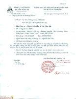 Báo cáo tài chính hợp nhất quý 4 năm 2014 - Công ty Cổ phần Tư vấn Sông Đà
