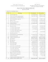 Báo cáo tài chính quý 2 năm 2009 - Công ty Cổ phần Tư vấn Sông Đà