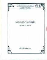 Báo cáo tài chính công ty mẹ quý 2 năm 2011 - Công ty Cổ phần Xây dựng hạ tầng Sông Đà