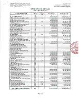 Báo cáo tài chính công ty mẹ quý 3 năm 2012 - Công ty Cổ phần Chứng khoán Ngân hàng Sài Gòn Thương Tín