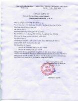 Báo cáo tài chính hợp nhất quý 2 năm 2014 - Công ty Cổ phần Tập đoàn Thiên Long