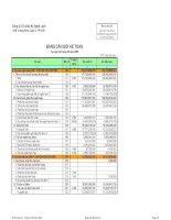 Báo cáo tài chính quý 3 năm 2008 - Công ty Cổ phần Kỹ Nghệ Lạnh