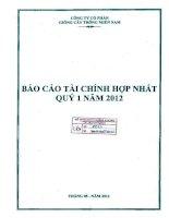 Báo cáo tài chính hợp nhất quý 1 năm 2012 - Công ty Cổ phần Giống cây trồng Miền Nam