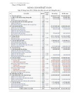 Báo cáo tài chính quý 2 năm 2010 - Công ty Cổ phần Sông Đà 6.06
