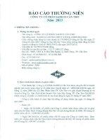 Báo cáo thường niên năm 2013 - Công ty Cổ phần Sadico Cần Thơ