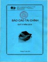 Báo cáo tài chính quý 2 năm 2014 - Công ty Cổ phần Đầu tư Điện Tây Nguyên
