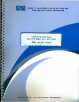 Báo cáo tài chính năm 2011 (đã kiểm toán) - Công ty Cổ phần Đầu tư Điện Tây Nguyên