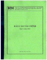 Báo cáo tài chính quý 1 năm 2012 - Công ty Cổ phần Khoáng sản Sài Gòn - Quy Nhơn