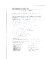 Báo cáo tài chính hợp nhất năm 2010 (đã kiểm toán) - Công ty Cổ phần Xi măng và Xây dựng Quảng Ninh